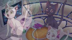 Bishoujo_Senshi_Sailor_Moon_Crystal_3-1