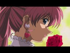 Lingerie_Senshi_Papillon_Rose-1