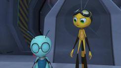 Space_bug-1