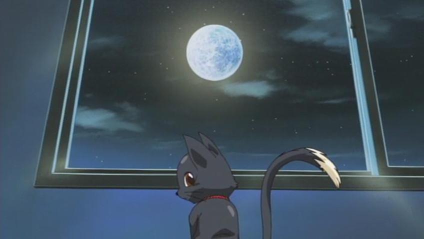 Ane jiru the animation: shirakawa sanshimai ni omakase